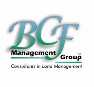 BCF Management group