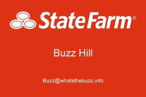 Buzz Hill Logo 2015-page-0