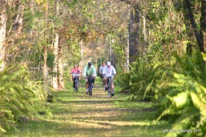 Bikers at Bird Rookery Swamp Trails