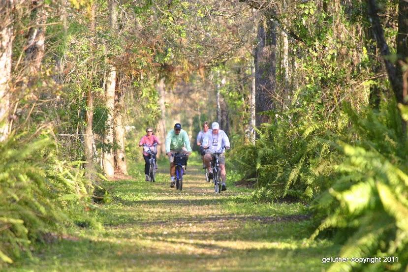 Bird Rookery Swamp bikers