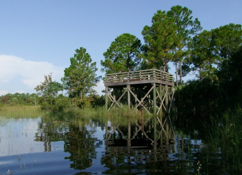 CREW observation tower from marsh