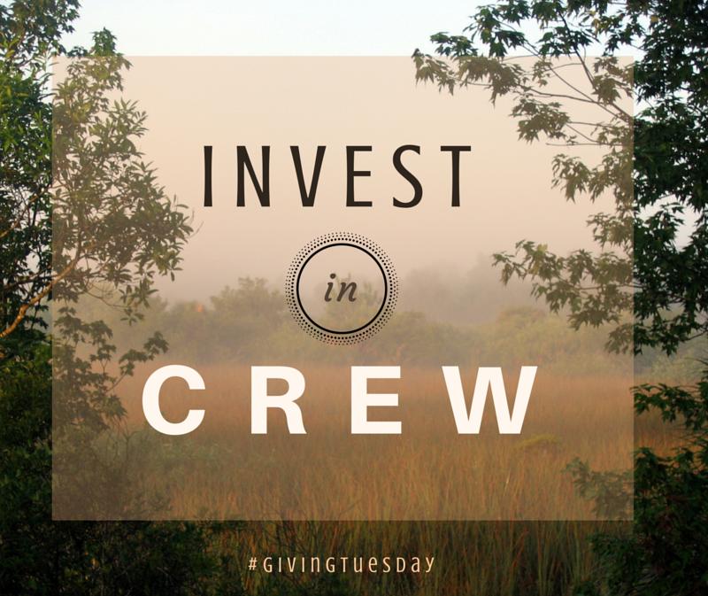 invest in CREW