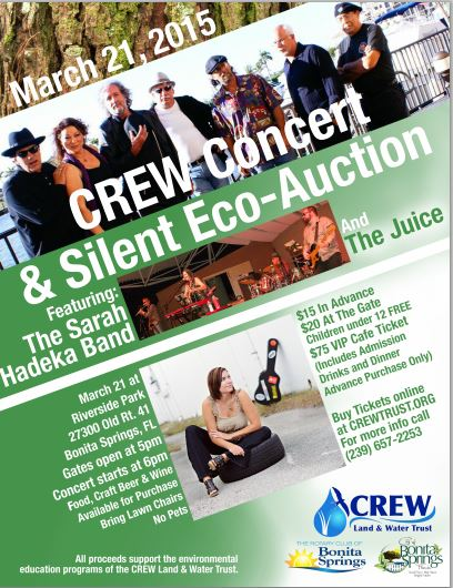 concert flyer picture