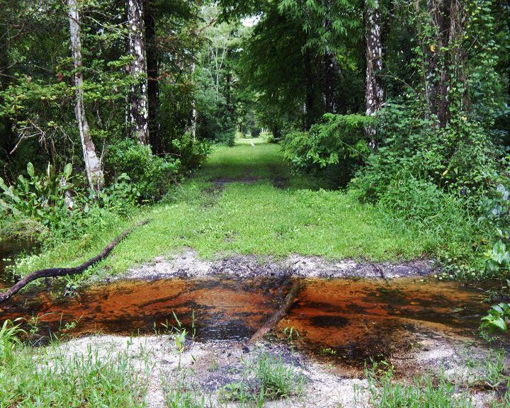 trail_0611